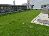 Green_roof